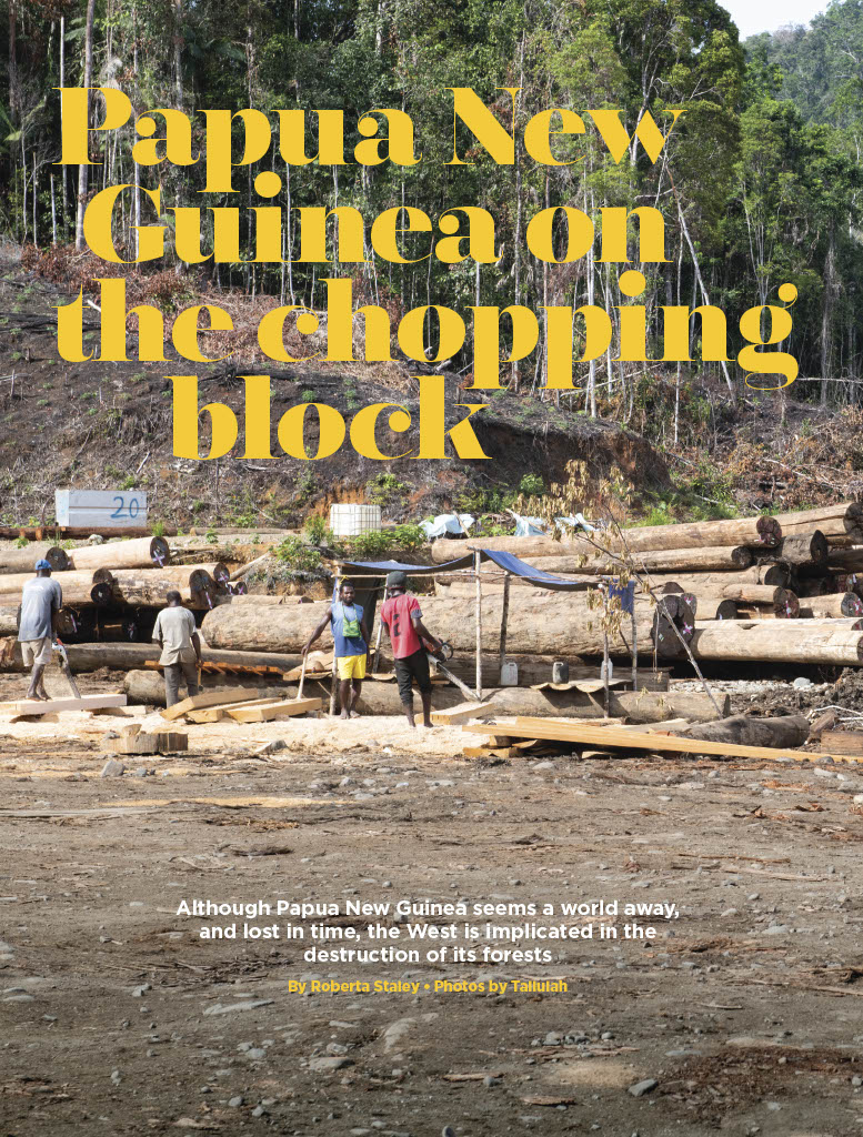 Papua New Guinea on the Chopping Block by Roberta Staley
